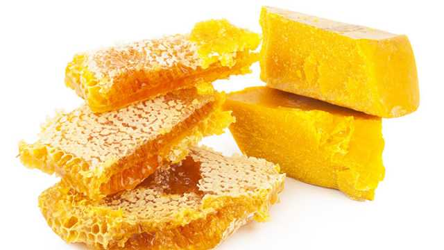 honey comb and then some melted bees wax