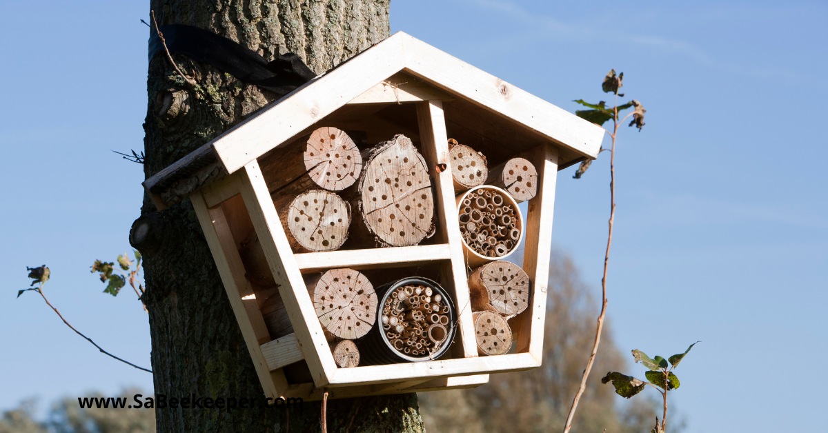 a bee hotel made with logs and round holders for the reeds and bamboo, hanging on a tree