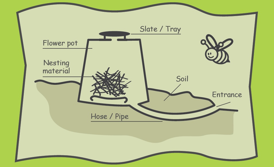 a picture of a possible nesting site to have for bumblebees
