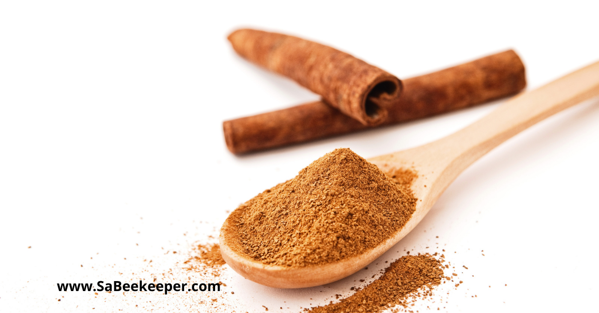 ground cinnamon for the apple cider honey remedy