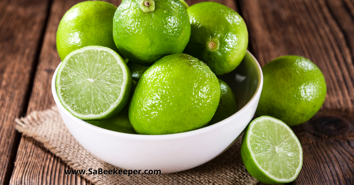 a bowl of fresh limes for juicing