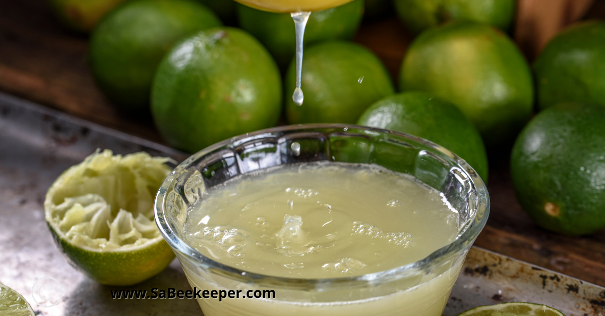 sieving the limes for juices once blended